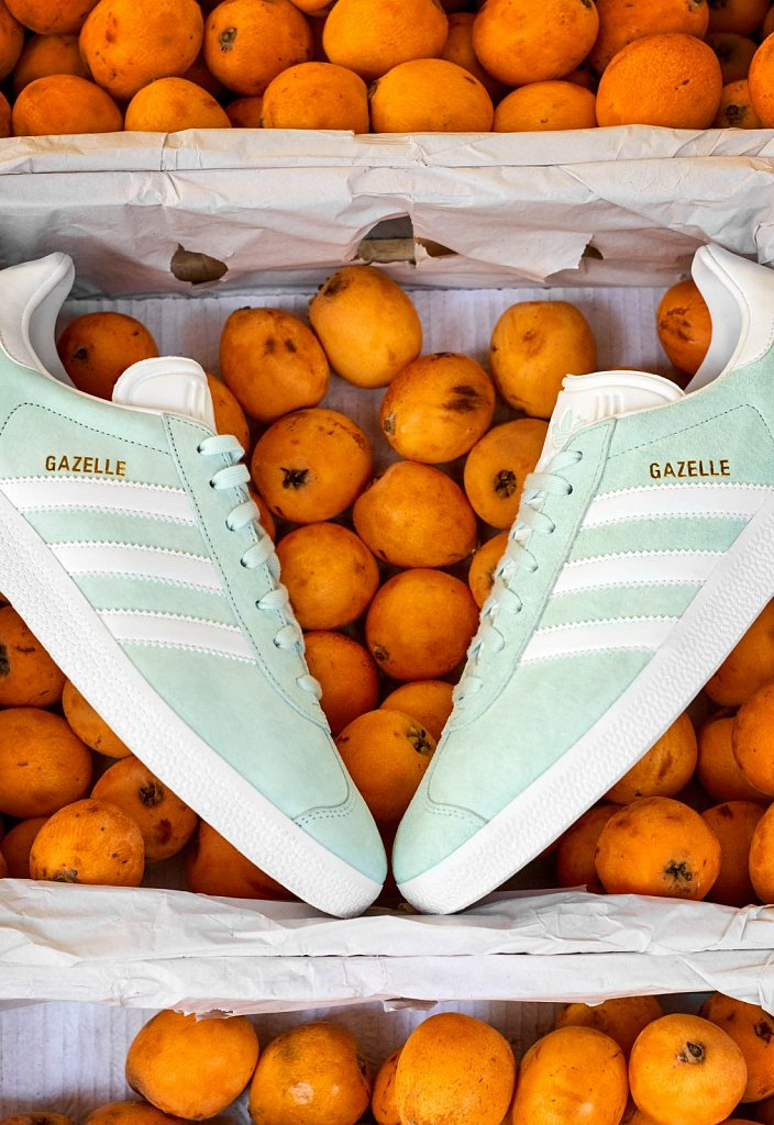Adidas-Gazelle-Frederike-Wetzels14.jpg