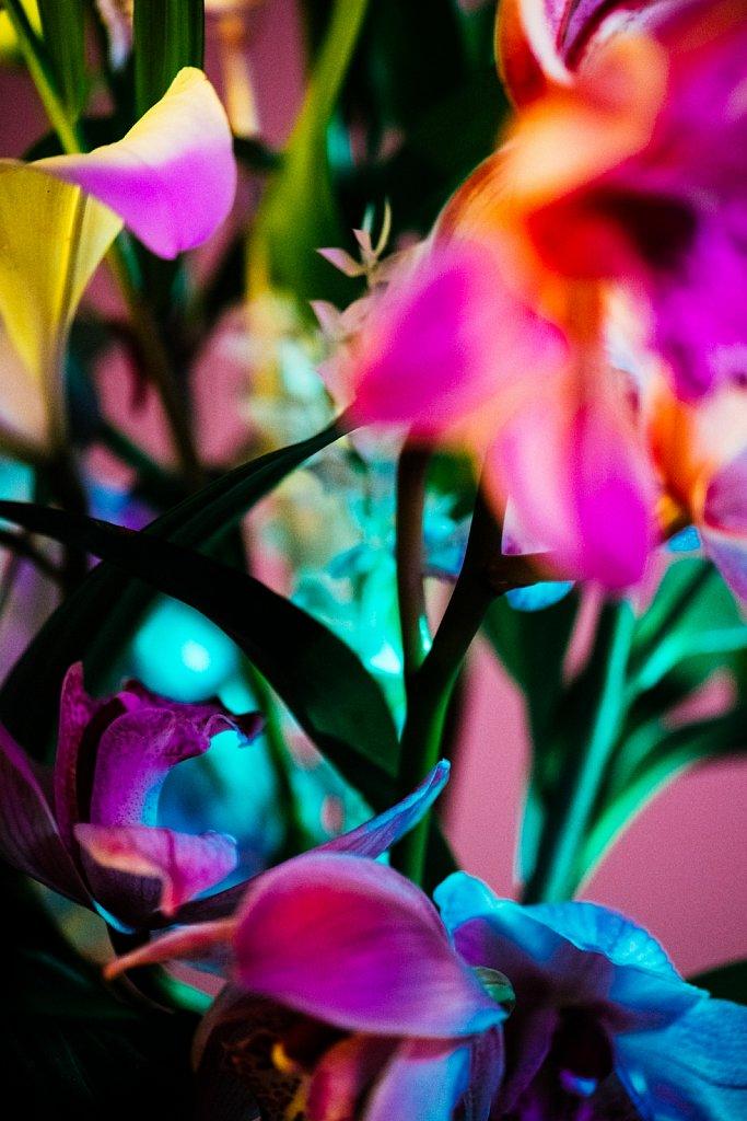 Acidflowers-Frederike-Wetzels-6665.jpg